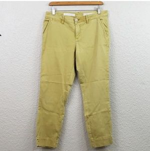 Pilcro and Letterpress Anthrologie Skinny Pants